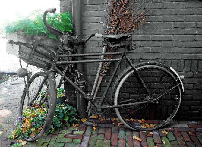 fiets dalfsen