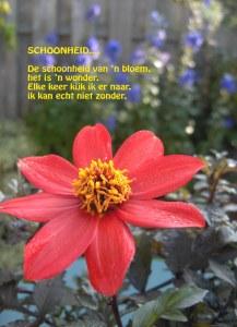 Schoonheid gedicht 2